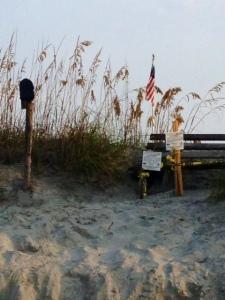 The Mailbox has a nest