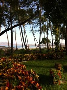 Tamarindo Resort and Beach