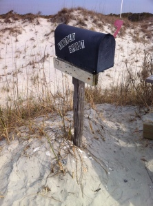 Mailbox survived the winter