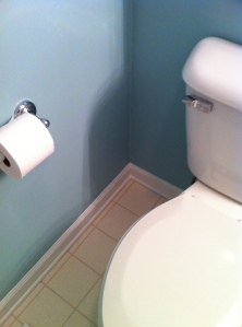 Painted! The Toilet is back in place