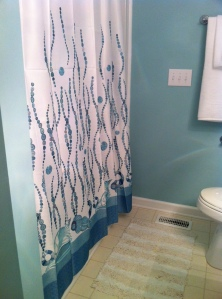 The Perfect Shower Curtain