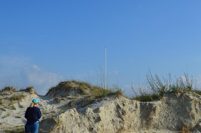 Barren Flagpole